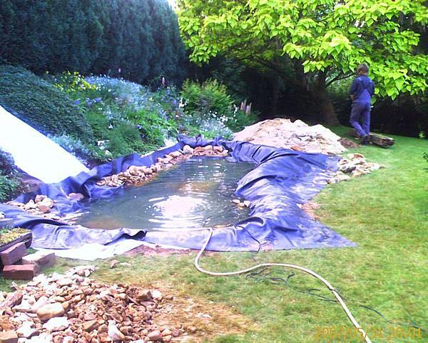 Koi und naturteiche for Goldorfen im teich