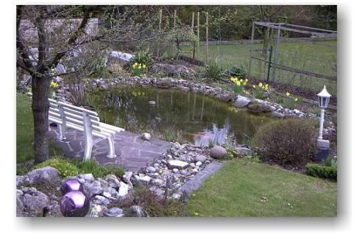 Koi und naturteiche for Gartenteich einsatz