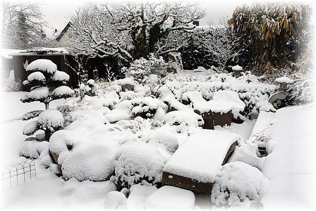 Koi und naturteiche for Teich im winter